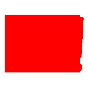轉向警示燈-車勢網